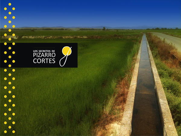 Pizarro Cortés www.maryanlozano.com