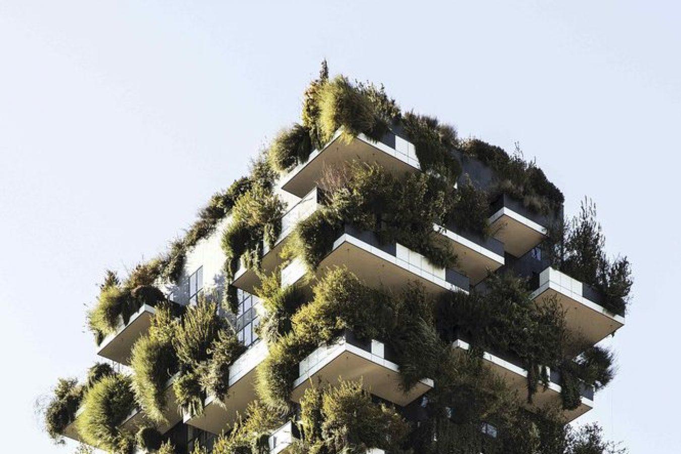 Eco & Healthy ____________________